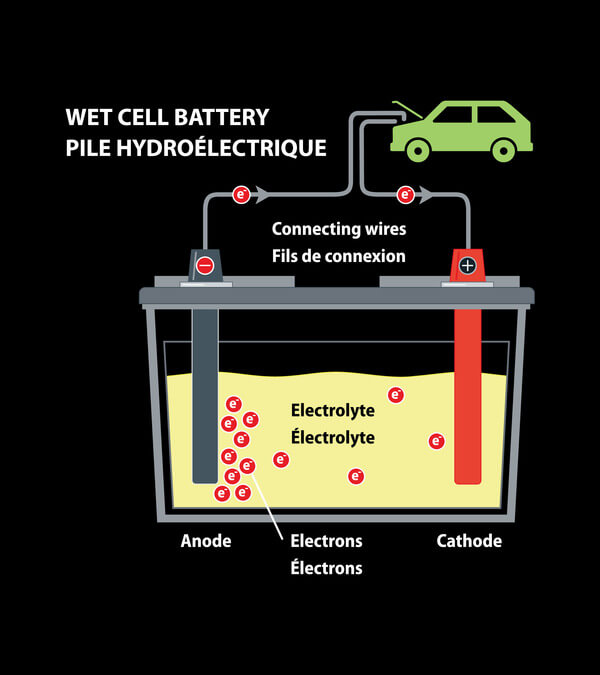 Flooded Wet Cell Battery